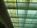 leptany strop